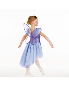 Fairy Dress with Detachable Wings